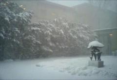 051214 snow2 (Dan4th) Tags: cameraphone winter cambridge snow boston phonecam ma mit 02139 massachusettsinstituteoftechnology