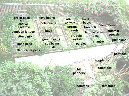 garden with labels