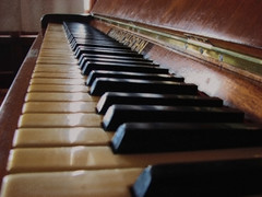 Play me... ( Popotito ) Tags: music argentina wonderful spectacular hotel keyboard artist play song exploring great piano player explore musica excellent lovely mardelplata tocar pianoplayer espectacular excelente esplore congrat excellentphotographerawards popotito pianolover