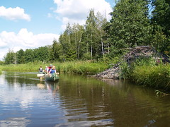 Canoeing by Beaver Lodge Photo