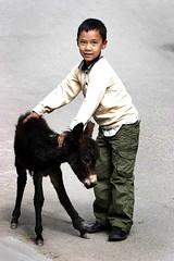 Ladakh - by babasteve