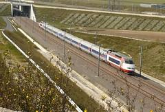 TGV HSBC 2