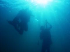 new live (aZ-Saudi) Tags: blue friends light sea summer sun gulf air dive deep scuba diving arabic saudi arabia bubble reef depth  ksa   alhasa        arabin arabs
