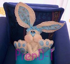 Conejin de Manta (PrenD-T) Tags: cute bunny handmade conejo manta hechoamano prendt