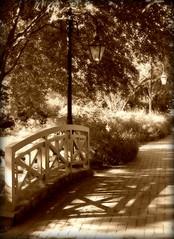 a walk through the garden (phoebe reid) Tags: bridge autumn brick fall lamp sepia garden virginia richmond sidewalk va lantern lightpost lewisginterbotanicalgardens favoritegarden