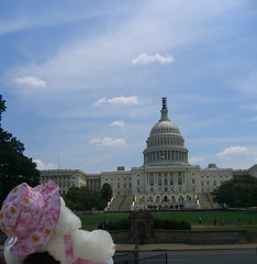 Jo Looking at the Capitol