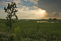 (baldwinm16) Tags: sunset nature illinois prairie springbrook springbrookprairie
