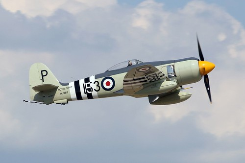 Warbird picture - Hawker Sea Fury FB 11