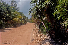 Sian Ka'an. (Margot) Tags: travel trees plants birds sand holidays yucatan reserve siankaan crabs iguanas puntaallen margotpouw mexico2007 margot