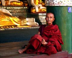 A Venerable Burmese Monk Contemplates (El-Branden Brazil) Tags: yangon burma buddhism myanmar burmese pagan bagan rangoon myanmarese onephotoweeklycontest