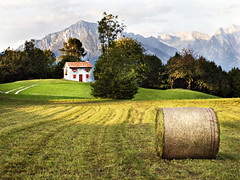 119-Bucoliqueries (gillespinault) Tags: onepictureaday onepictureperday unephotoparjour ricoh gx100 gilles pinault 365 italia dolomites field grass bucolic mountain landscape sun sky peaceful quiet calm rest green photodujour akigilles project366 akietgilles366 gillespinault366