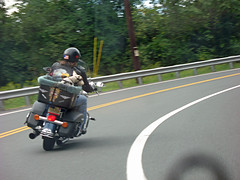 Dog Riding Motorcycle (magarell) Tags: dog nj martinsville somersetcounty mortorcycle