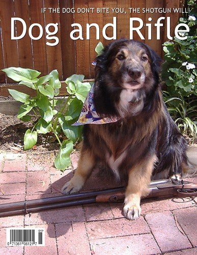 Dog and Rifle