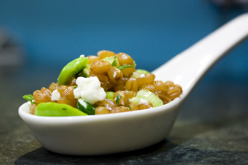 Green Garlic and Fava Wheat Berry Salad