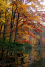 ...into the water (bdaryle) Tags: autumn fall nature water colors leaves reflections sony biglake brandondaryle bdaryle imagesbybrandon