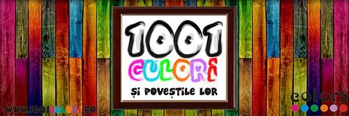 benner 1001 blogger