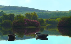 Birdsong (ericwyllie) Tags: desktop wallpaper landscape 350d scotland eric day time outdoor background backgrounds loch orientation 2007 kilmacolm inverclyde knappsloch ericwyllie imagetype anawesomeshot photospecs