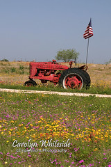 Farmall Yard Art