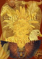 Native American Spirit (alternique) Tags: bear horse sun atc artisttradingcard collage skull wings wolf eagle indian feathers nativeamerican aceo longhorn arrowhead bearpaw digitalcollage alternique
