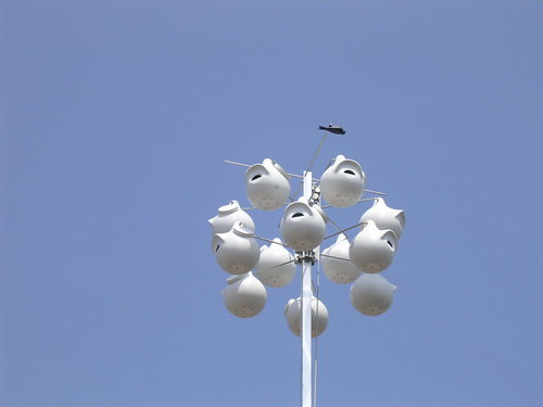 Coolest purple martin house ever