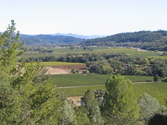 Napa Valley - view from Sterling winery