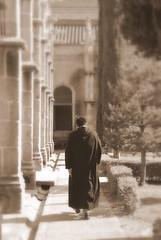 Monk's Loneliness / La soledad del monje