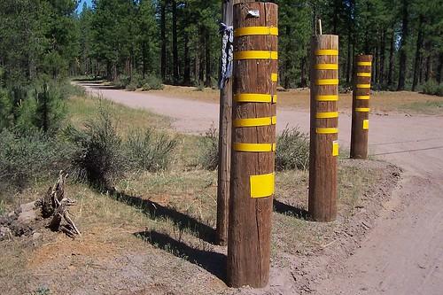 poles yellow stripes