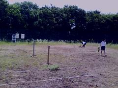 草むしり後のテニスコート