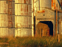 West Texas Grain Elevator, Sunset Glow - by cobalt123