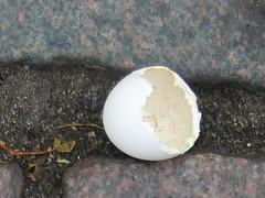 Egg Shell (P1020002)