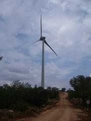 Os geradores eólicos vistos de perto