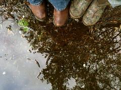 After May Rain 1