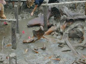 The Hyde Park Mastodon excavation site