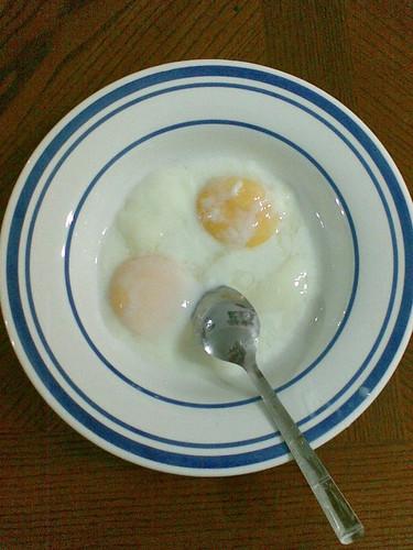 Twin yolk