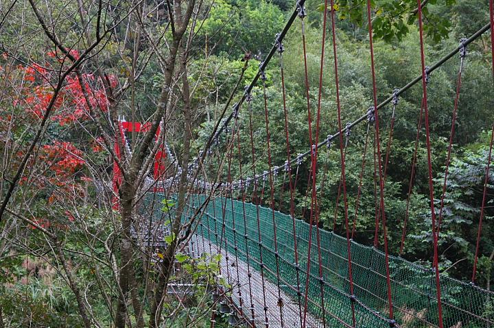 八卦力吊橋007