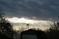 DSC01140 (jengar) Tags: weathervane northants darkclouds wellingborough greatdoddington