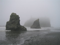 Sea Stacks (Ryan Hadley) Tags: usa seascape beach nature fog landscape washington nationalpark hiking shoreline worldheritagesite pacificocean shore olympic rubybeach olympicnationalpark seastack kalaloch