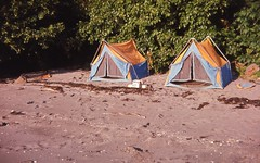 camping equipment stores
