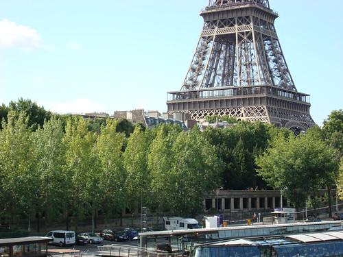 Eiffel et arbres-137