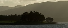 Kentallen headland backlit by dusky sunlight (gdelargy) Tags: water headland lochlinnhe kentallen canonef70200mmf4lusm