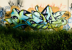 Bely (TheHarshTruthOfTheCameraEye) Tags: graffiti bay area hcm ase bely