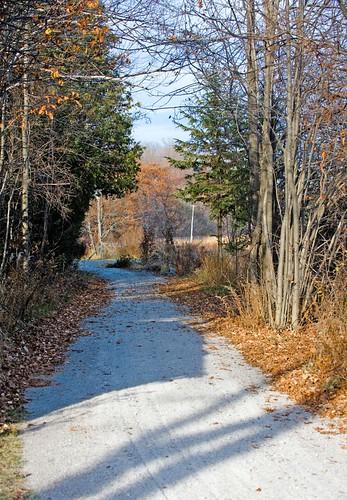 Orillia - Autumn Laneway