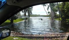 Seawall Overflow