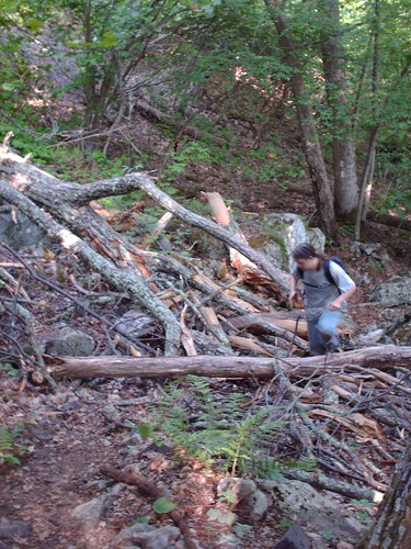Wind Rock to Craig's Creek 2007 - Trashed Trail #2