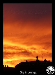 Sky is Orange