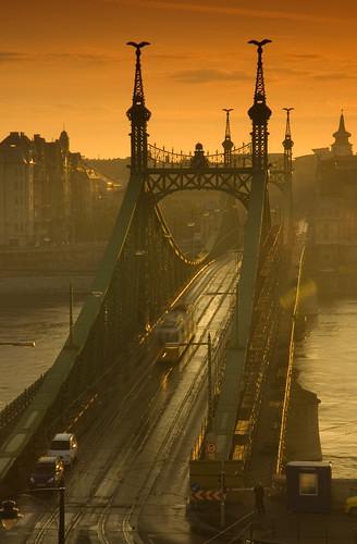 Liberty Bridge Budapest #4