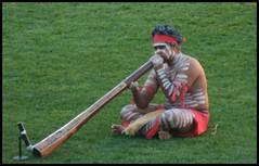 aboriginal music (Peter Cabral Photography) Tags: australia brisbane aboriginal queenslandroar aboriginalmusic aboriginalman