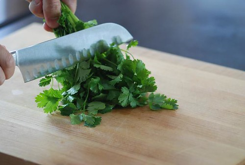 chopping cilantro by cookthink