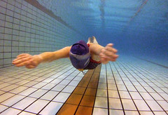 Freediving Record: Liv's 104m Underwater Swim (jayhem) Tags: liv freediving record dnf camberwell pool swimmer swimmingpool livphilip underwater breaststroke glide london girl apnea dynamicnofins noseclip neckweight speedo relaxed water apne sport plonge diving freediver swimming competition competitor aida bfa uk sports action swim dive breathhold athlete ccby creativecommons cc skin skindiving