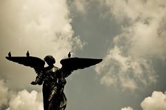 Angel? - by minwoo